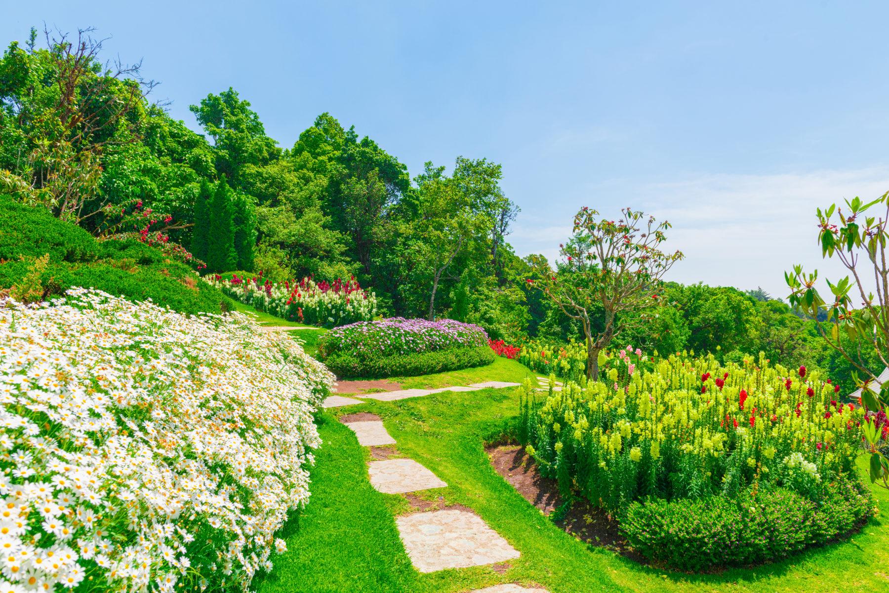 entretien jardin | Guide Jardins et Paysages