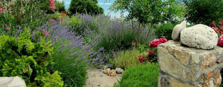 creation-de-jardin-mediterraneen